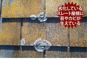劣化しているスレート屋根に苔やカビが 生えている