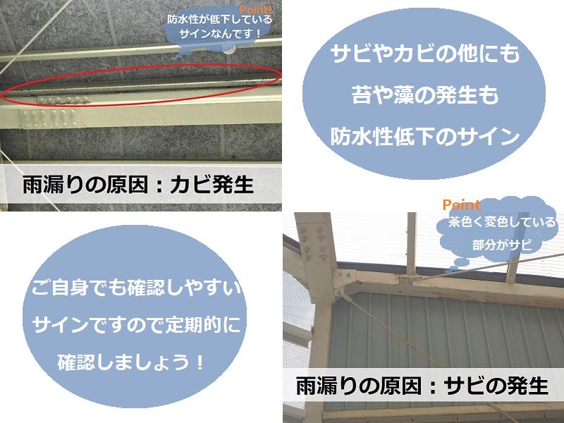 工場屋根雨漏りの原因 カビやサビの発生