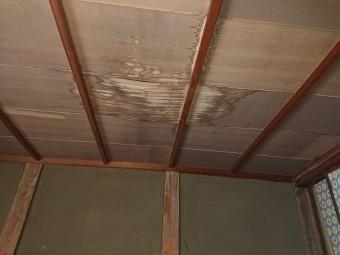 雨漏りによるシミが発生している和室の天井