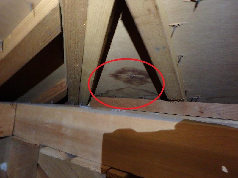 天井裏雨漏りシミ
