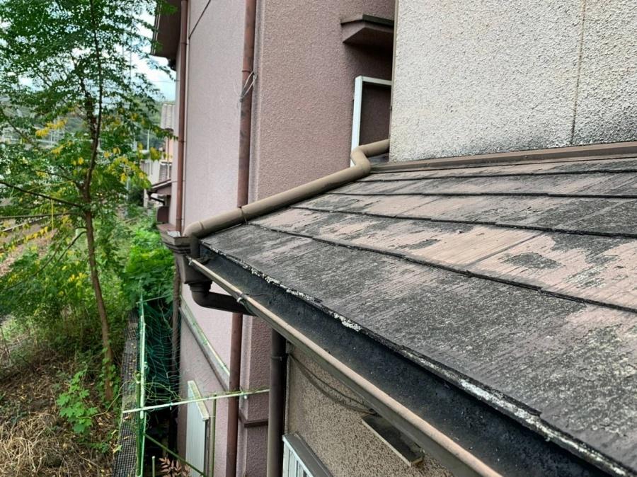 屋根カラーベスト点検3