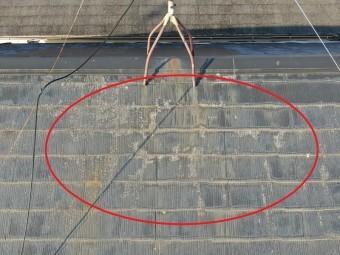 コケやサビが付着したスレート屋根