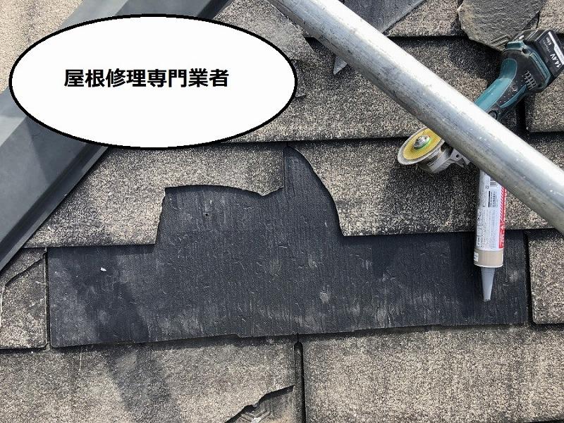 屋根修理専門店