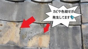 瓦屋根のカビ・色褪せ