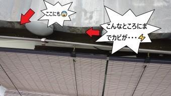 瓦屋根のカビ