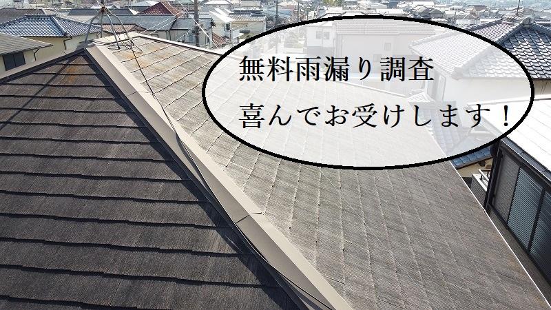 東大阪市 雨漏り調査
