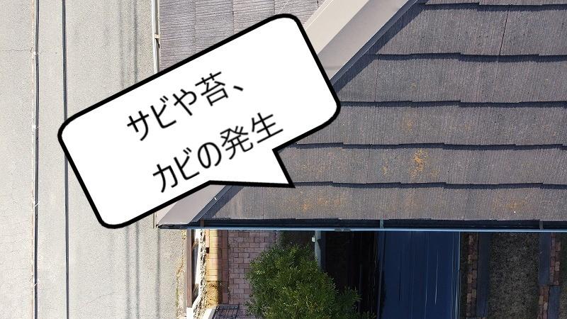 スレート屋根 サビ・苔・カビ