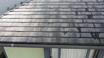 カビとコケが生えたスレート屋根