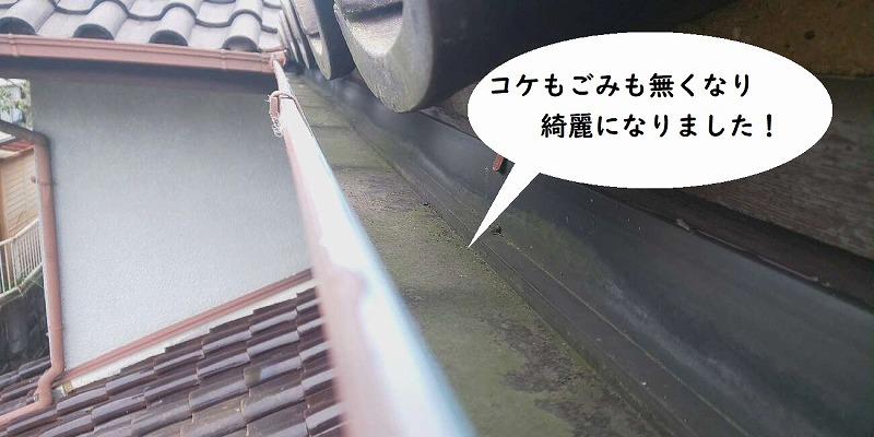 瓦屋根雨樋掃除