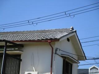 瓦補修工事の完成
