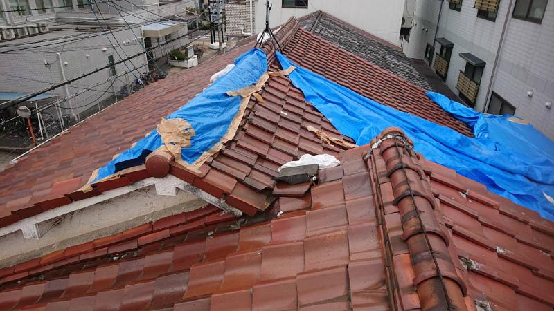 台風の被害でブルーシートをかけている
