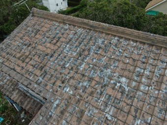 大屋根の拡大写真