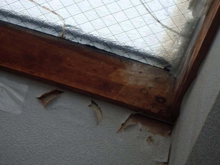 天窓雨漏り内部カビ