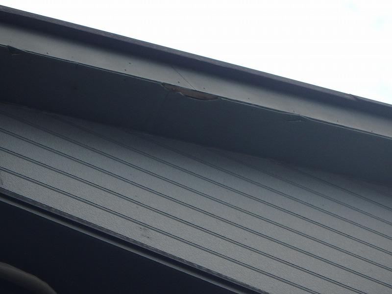 反対面の破風板のケイカル板破損状況
