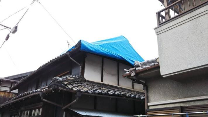 屋根ブルーシート養生4