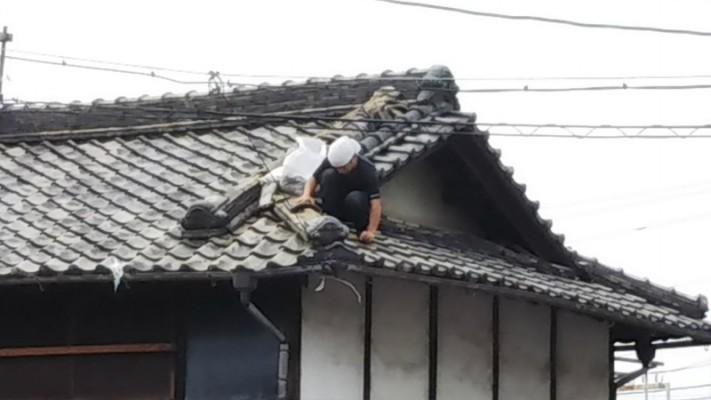 屋根ブルーシート養生3