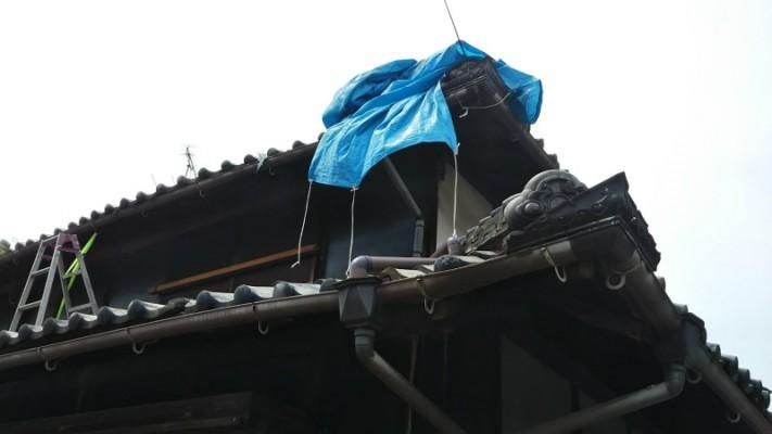 屋根ブルーシート養生2