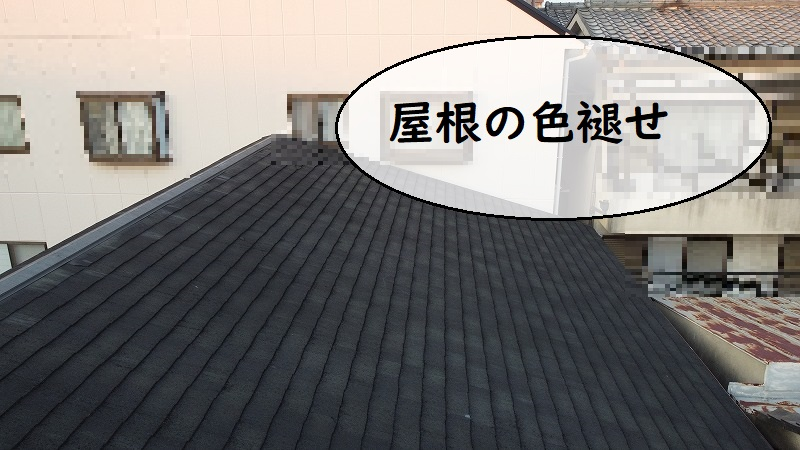 和泉市 雨漏り点検 屋根色褪せ