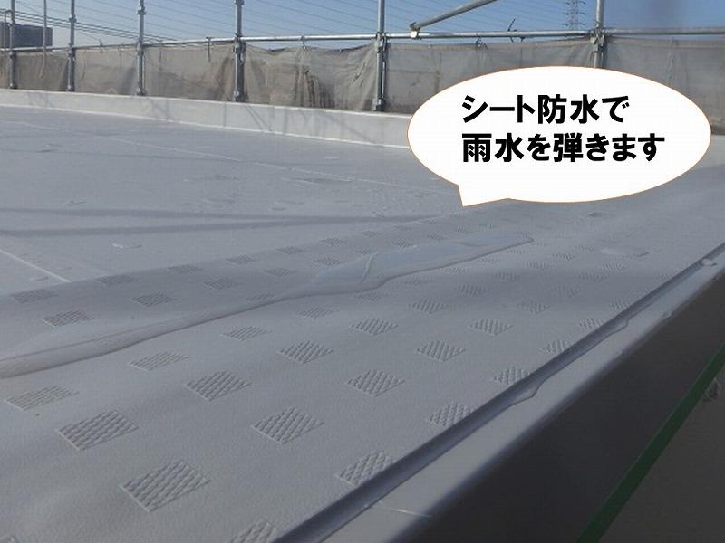 屋上を修繕したことで防水層が復活し雨水を弾く