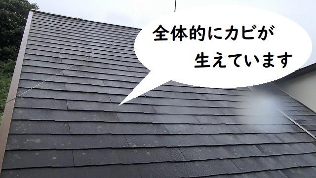 河内長野市にて屋根カバー工法ご希望でお問い合わせ頂きました